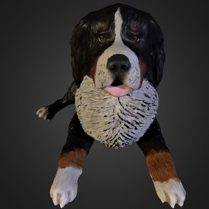 bernese mountain dog 3ds