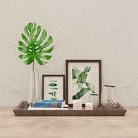 decorative set monstera 3d model