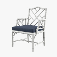 chippendale arm chair max