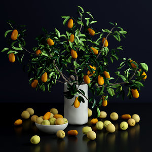bottle kumquat plums flowers 3d model