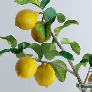 bottle lemon branch flowers 3d model
