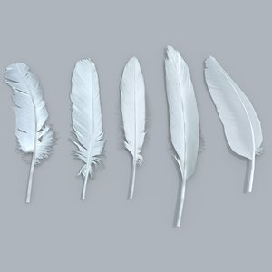 x feathers