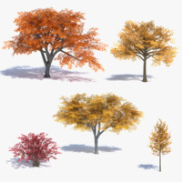 fall tree 3ds