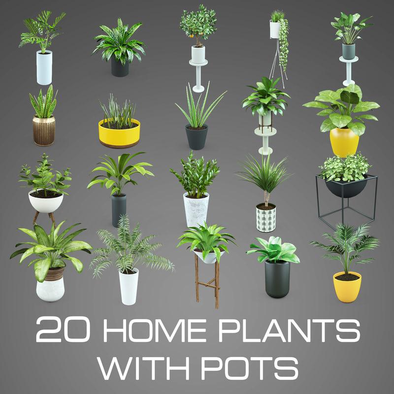 3d set home plant pots
