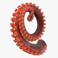 3d max octopus tentacle 04