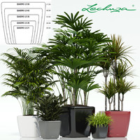 3d plants lechuza quadro ls model