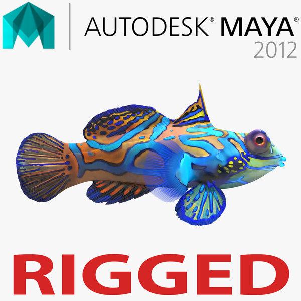3d model of mandarinfish rigged