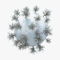 3d model planet winter