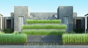 2 grass 13 max