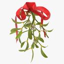 Mistletoe 3D models