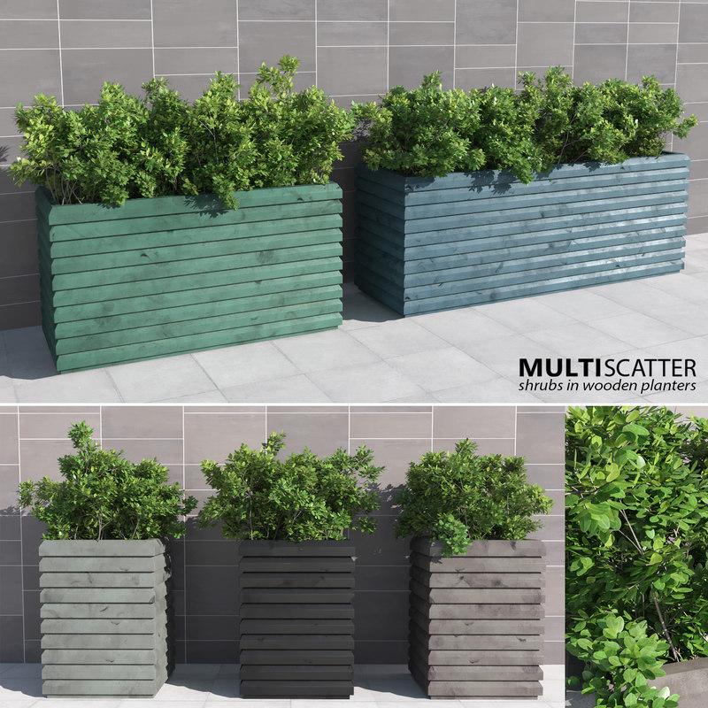 3d shrubs wooden multiscatter model