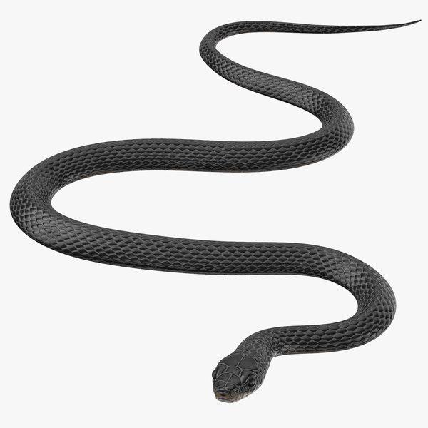 obj black snake 01