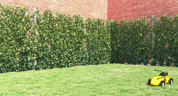 3d model ivy plant fence growfx