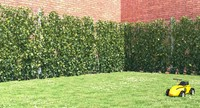 Ivy Fence GrowFX