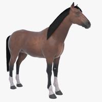 max brown horse