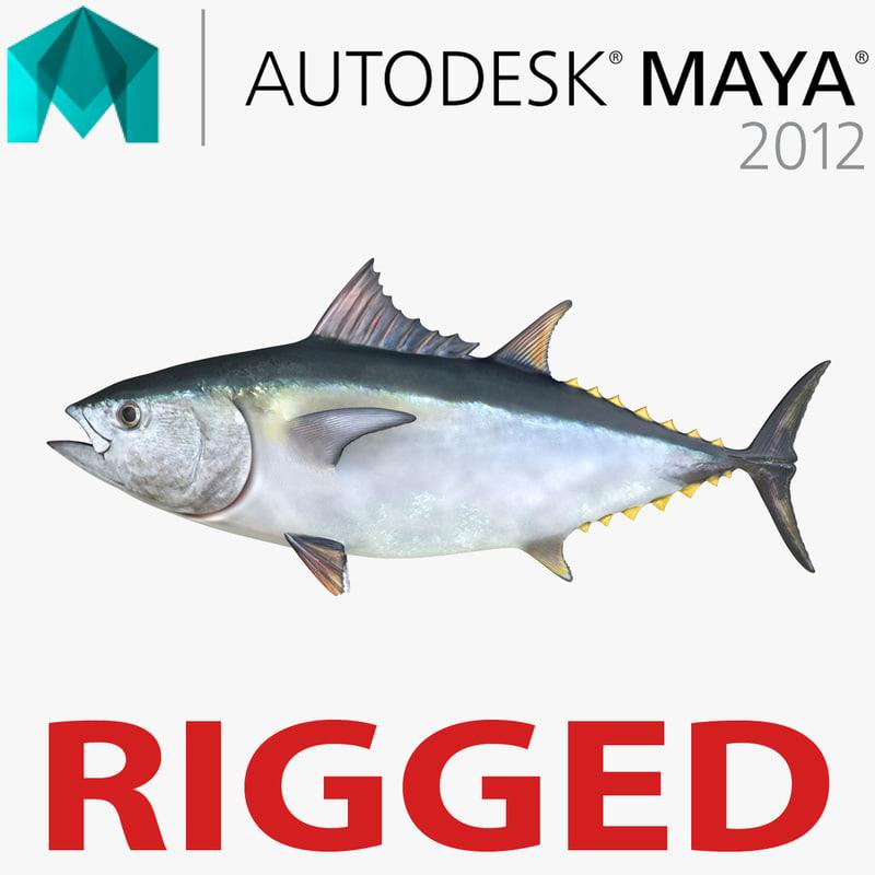 tuna fish rigged 3d ma