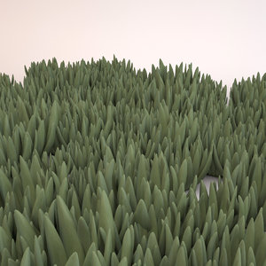 3d model of ice plant ground cover