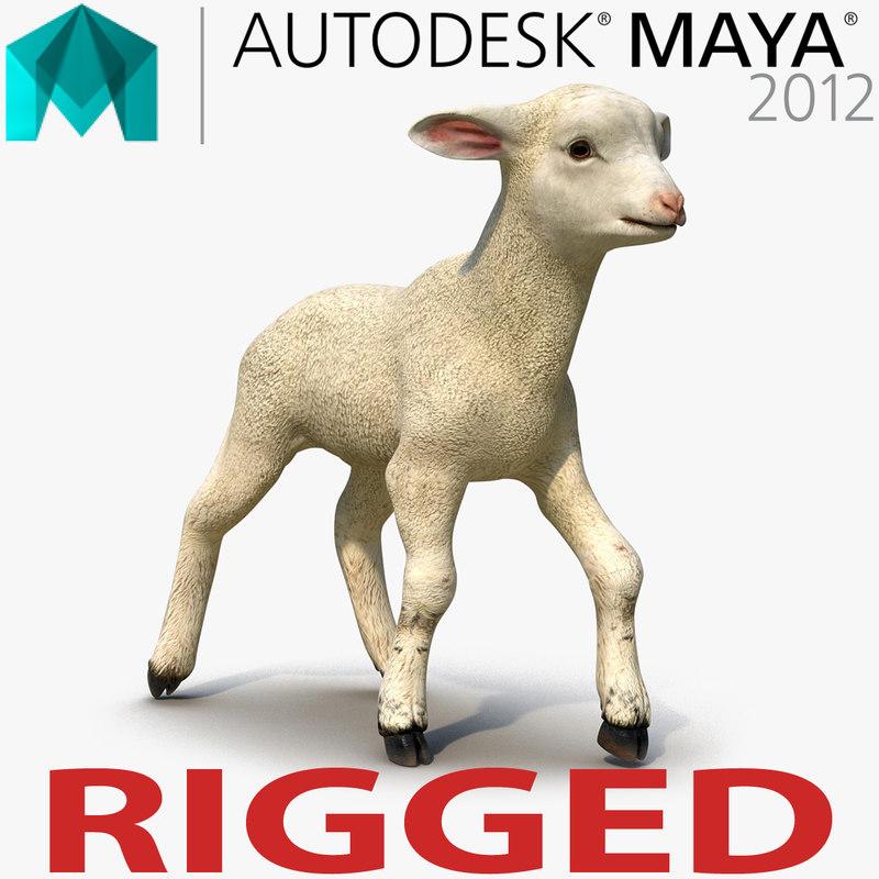lamb rigged 3d ma