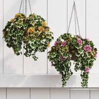 max flowerpots flowers