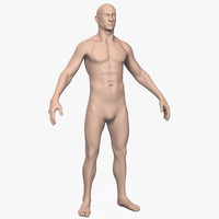 3d model of male man human