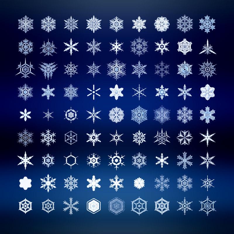 3d snowflakes set 81 piece model