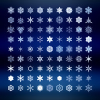 Snowflakes set 81 piece