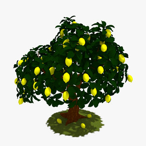 3d lemon tree model