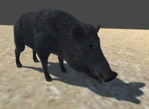 boar rigged animations fbx