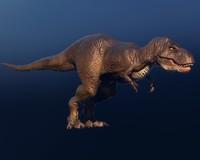 3d tyrannosaurus ready model