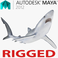 Blue Shark Rigged for Maya 3D Model