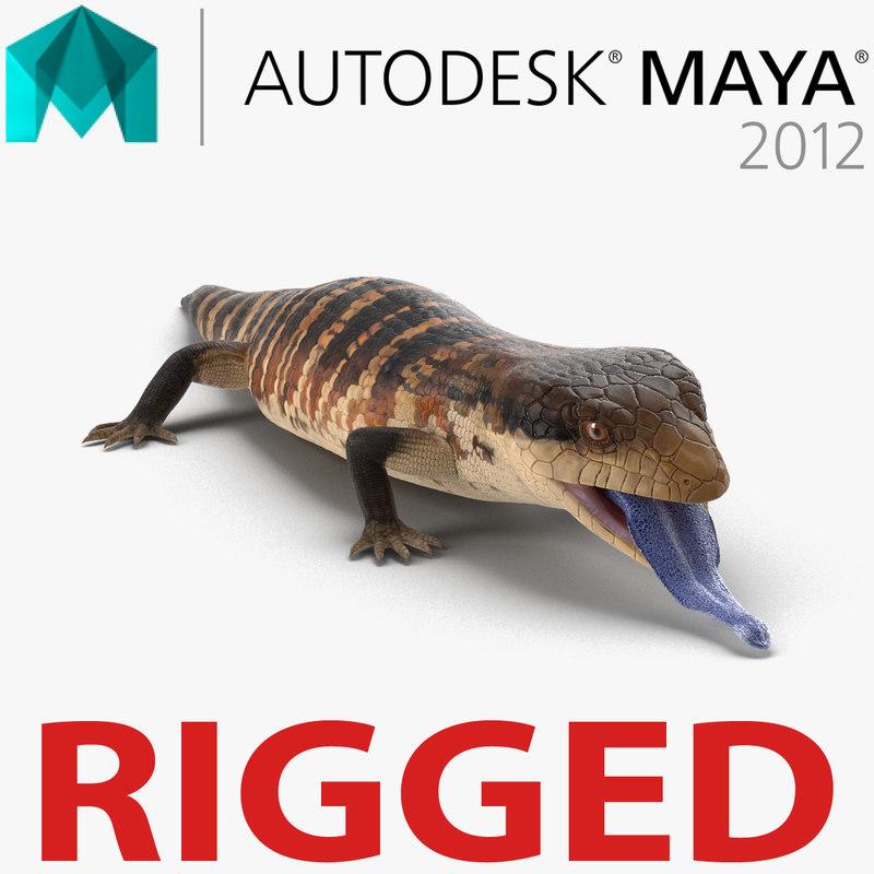 3d blue tongued skink rigged model