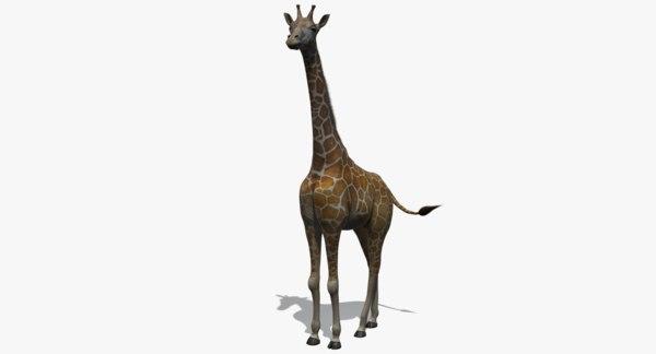 realistic giraffe rig 3d model
