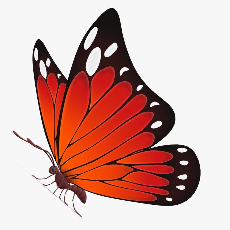 beautiful butterfly cartoon 3d max
