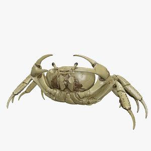 max crab