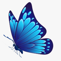 3d beautiful butterfly cartoon model