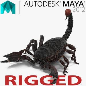 3d model black scorpion rigged