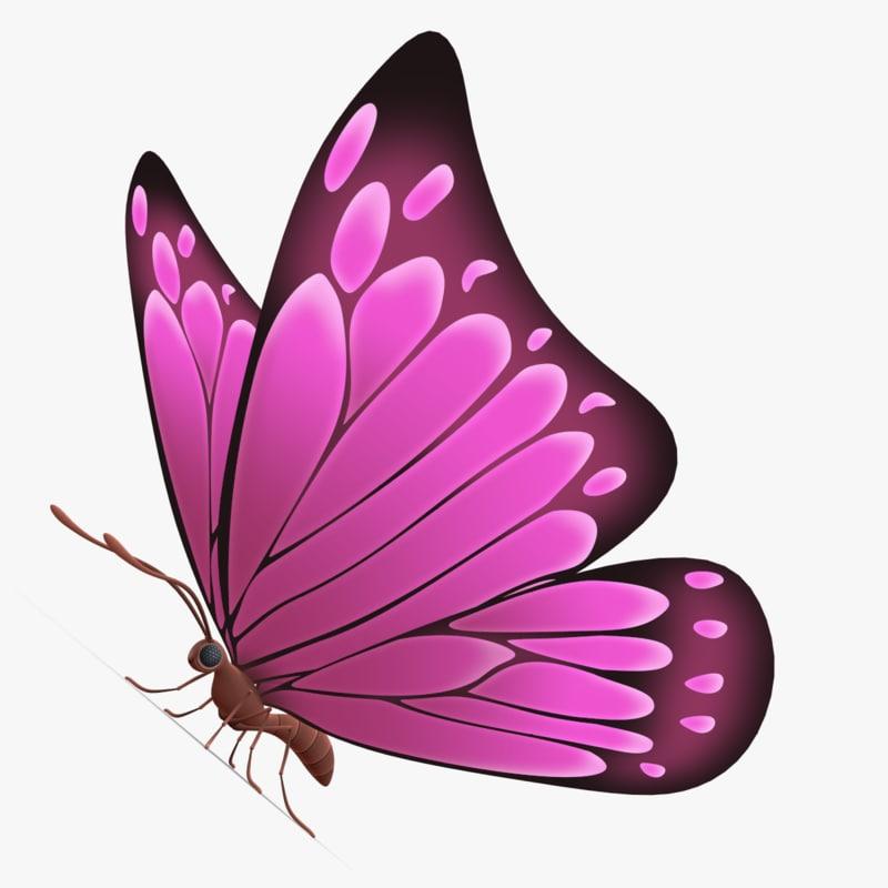 beautiful butterfly cartoon obj