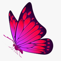 beautiful butterfly cartoon 3d max