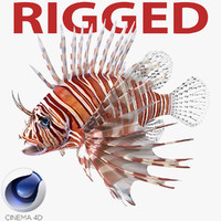 c4d lionfish rigged