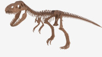 3d model t-rex skeleton