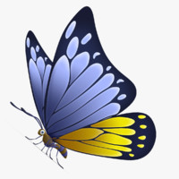 3d model of beautiful butterfly cartoon customizable