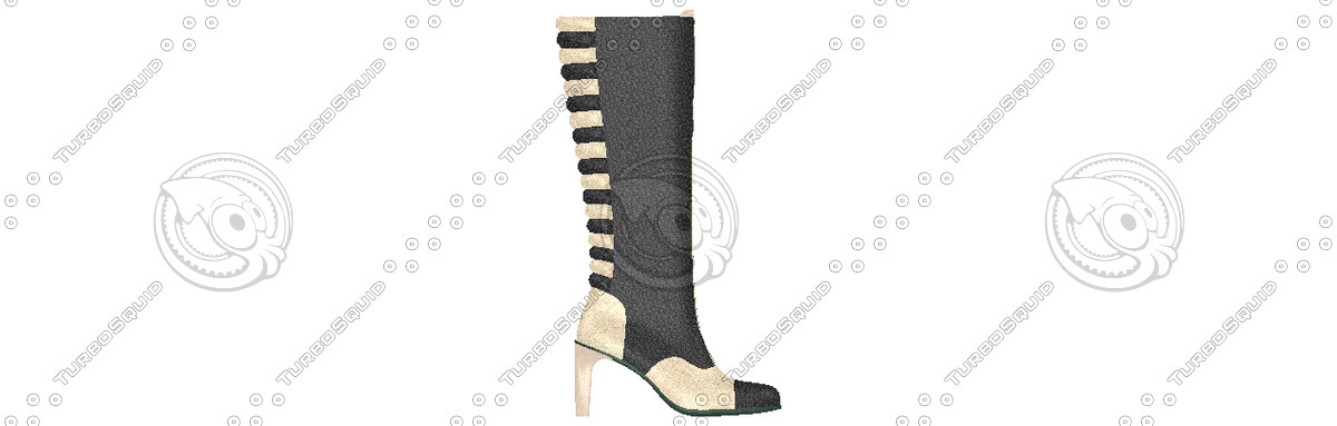 long shoes 3d model