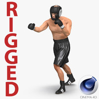 3d model adult boxer man rigged