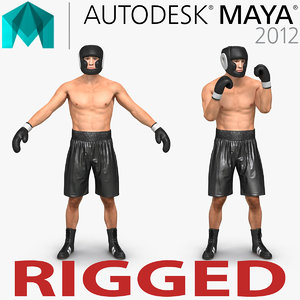 ma adult boxer man rigged