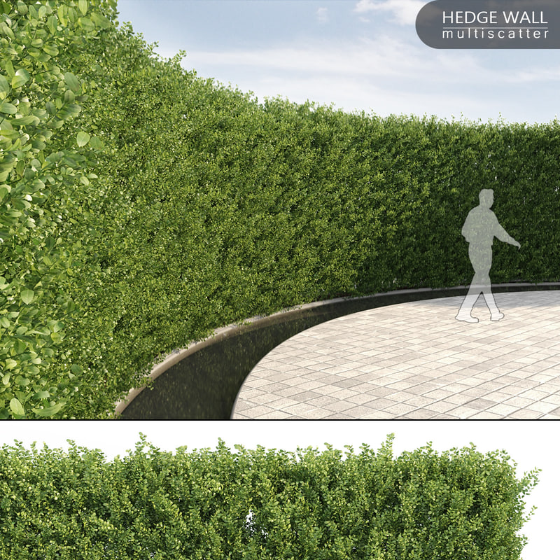 3d vertical hedge multiscatter model