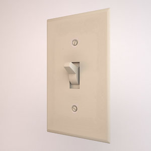 max light switch