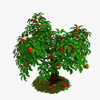 tree peach 3d model