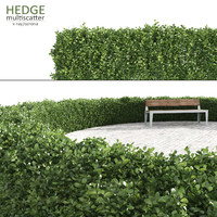hedge multiscatter scattered 3d max