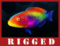 Fish_Rigged