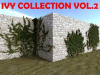 ivy plant 3d model